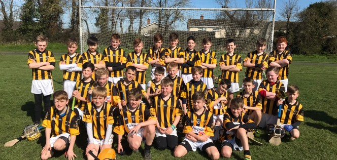 team-pic-2017-u11s-hurling