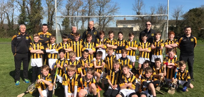 team-pic2-2017-u11s-hurling