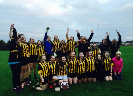 Victory for under 17 girls in their Shield Final