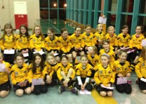 Juvenile Camogie…the curtain falls for some!