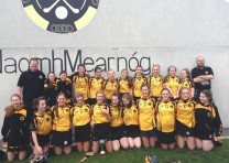 Juvenile Camogie Round up