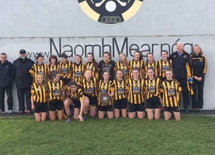 Minor Girls win Division 2 Shield!