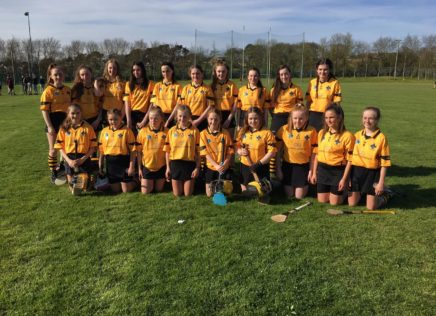 Girls Camogie U-15
